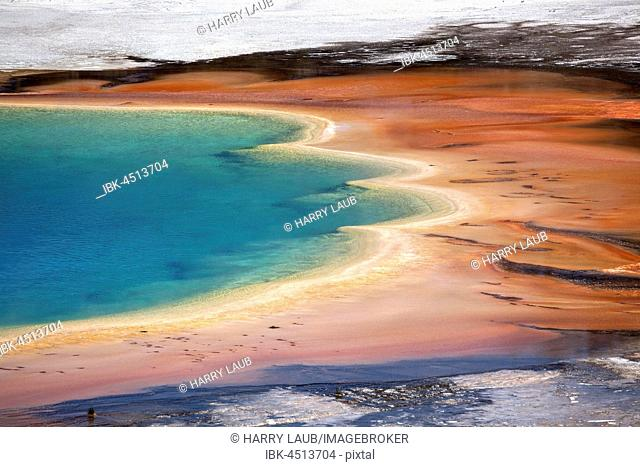 Mineral deposits, Grand Prismatic Spring, Midway Geyser Basin, Yellowstone National Park, Wyoming, USA