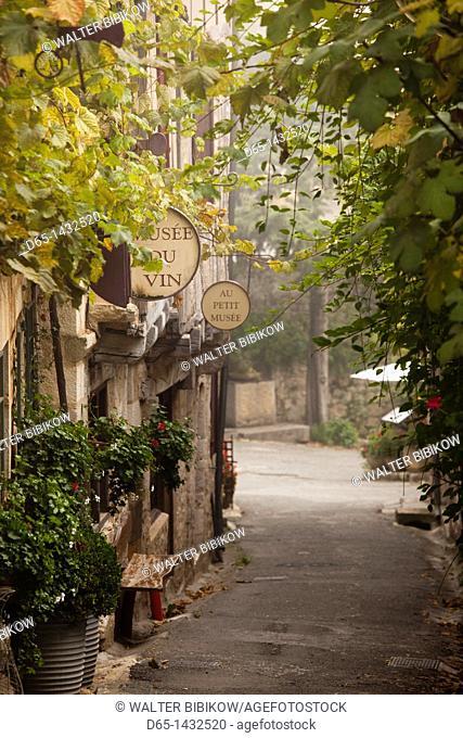 France, Midi-Pyrenees Region, Lot Department, St-Cirq-Lapopie, town detail