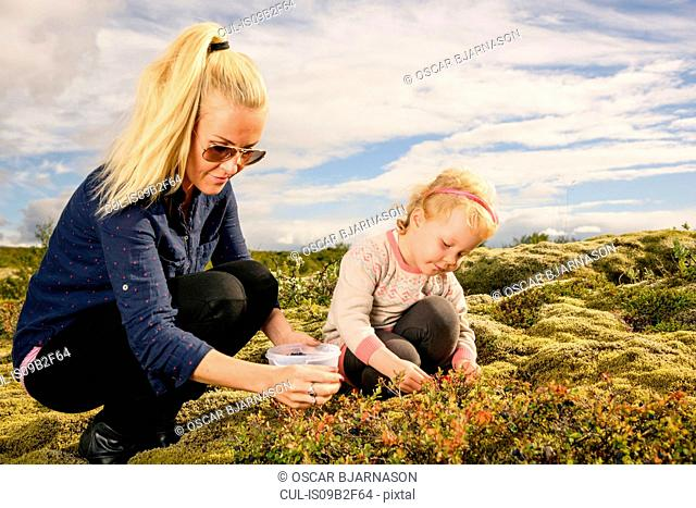 Mother and daughter outdoors, picking blueberries