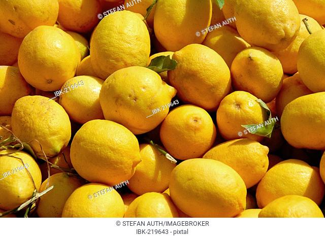 Yellow Lemons at a market Casablanca Morocco