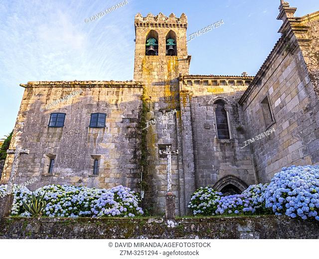 Colegiata de Santa María. Bayona. Pontevedra. Galicia. España