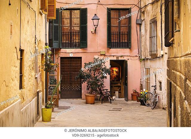 Typical building in the historic center, Palma de Mallorca. Majorca, Balearic Islands, Spain Europe