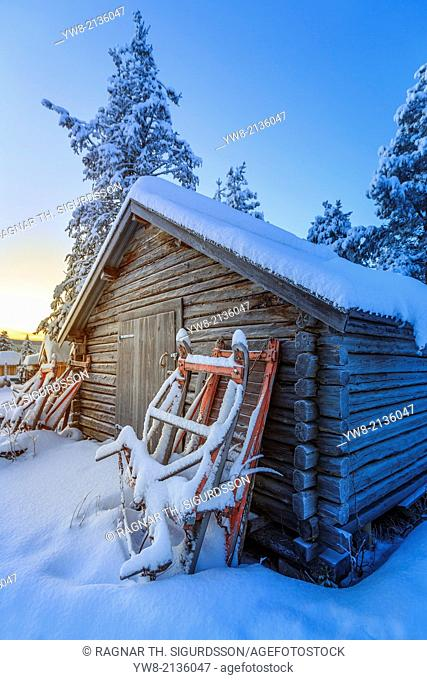 Snow covered trees in extreme cold temperatures, Lapland, Sweden Sleds and small log shed, Lapland, Sweden