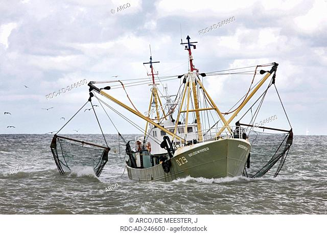 Crab cutter fishing boat Belgium North Sea