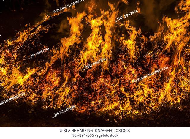 A Holy man runs through a massive Holika bonfire as 20,000 spectators look on at 4 AM in the remote village of Falen, Uttar Pradesh on Purnima (full moon)