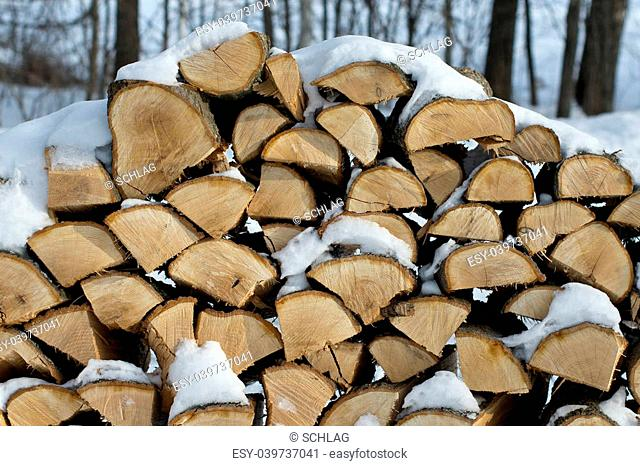 Stacked Oak firewood for a long winter