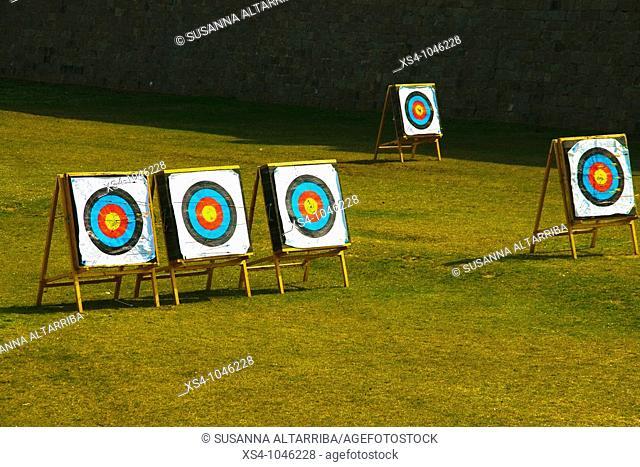 Dardboard, target, objective