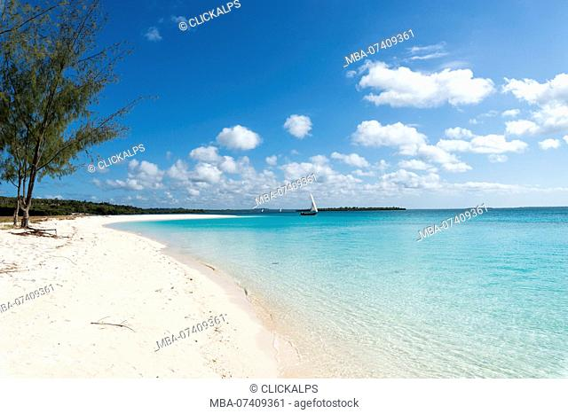 East Africa, Tanzania, Zanzibar, Kendwa beach on a summer day