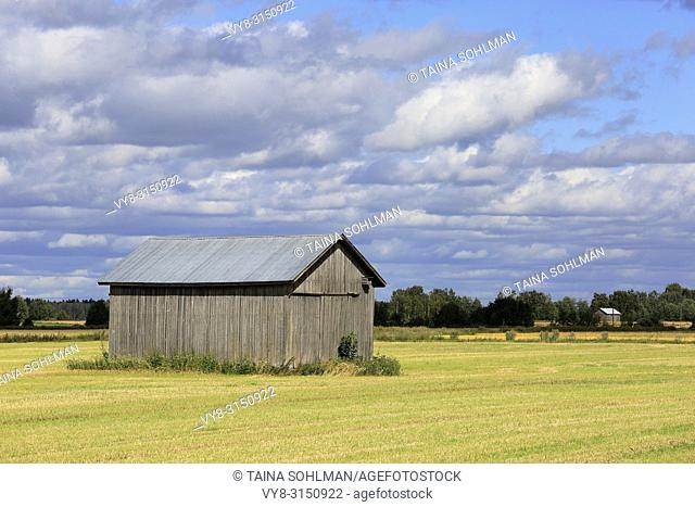Grey wooden barn in harvested field in early autumn, with background agricultural scenery of blue sky, clouds and another barn. Ostrobothnia, Finland