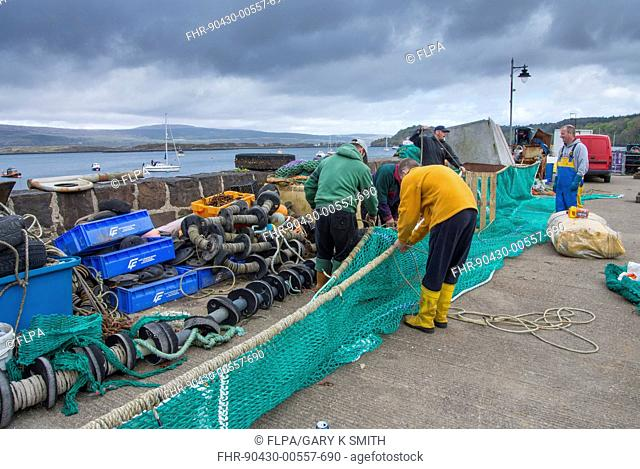 Local fishermen repairing fishing nets on harbour wall in coastal town, Tobermory, Isle of Mull, Inner Hebrides, Scotland, May