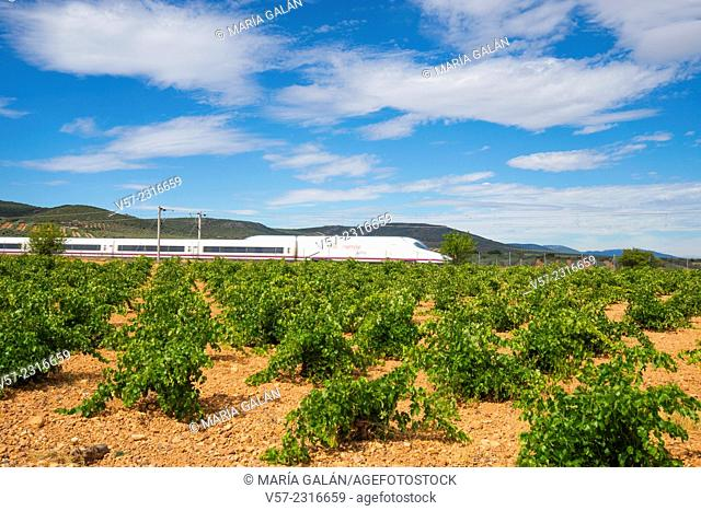 AVE high-speed train traveling along the vineyards. Mora, Toledo province, Castilla La Mancha, Spain
