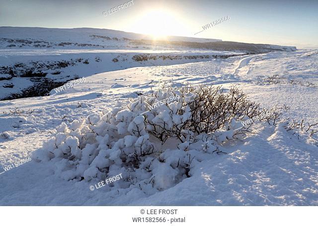 Snow-covered winter landscape near Gullfoss Waterfall, Iceland, Polar Regions