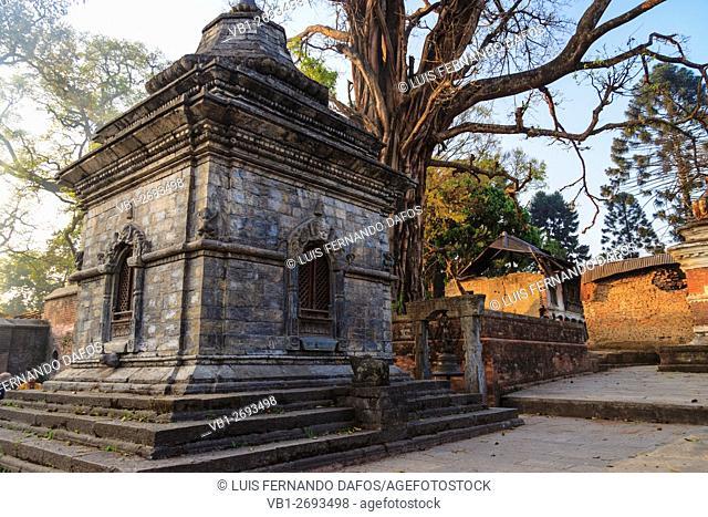 Small shrines at Pashupatinath temple at dawn. Kathmandu, Nepal