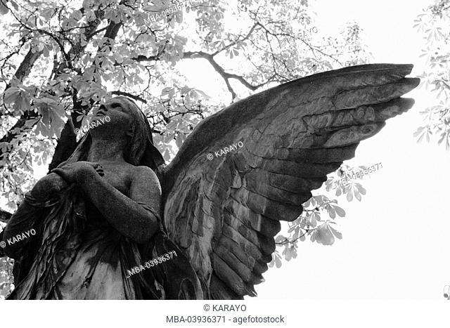 grave yard, grave, statue, angels, detail, s/w