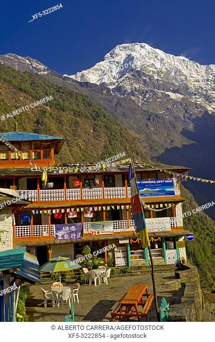 Rest Area, Small Village, Ghest House, Annapurna South, Annapurna Range, Trek to Annapurna Base Camp, Annapurna Conservation Area, Himalaya, Nepal, Asia