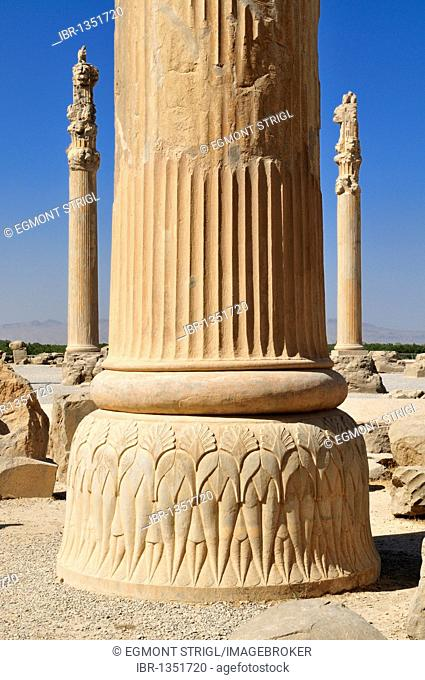 Huge columns at the Achaemenid archeological site of Persepolis, UNESCO World Heritage Site, Persia, Iran, Asia