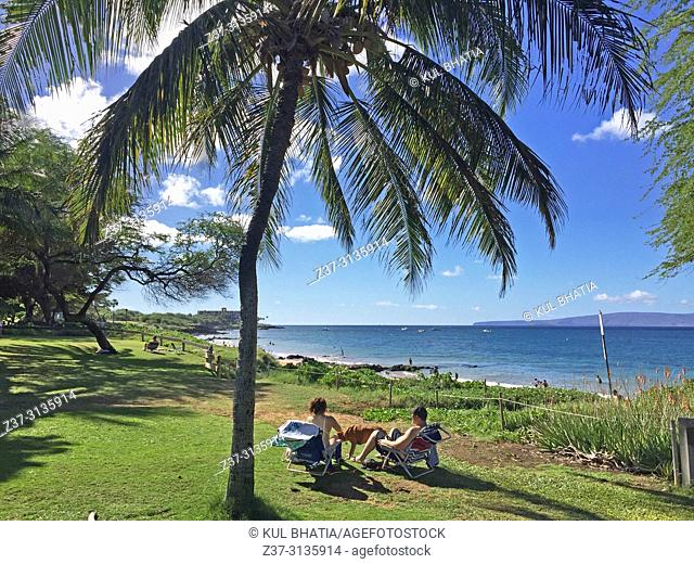 A couple relaxing on grass at the water's edge underneath a coconut palm tree, overlooking the blue Pacific Ocean and a small volcano