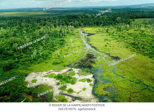 Lango Bai. Odzala-Kokoua National Park. Cuvette-Ouest Region. Republic of the Congo