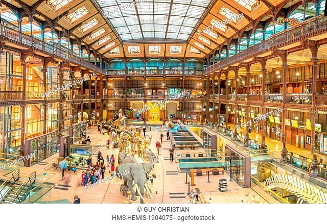 France, Paris, Museum National d'Histoire naturelle (national museum of natural history), La Grande Galerie de l'Evolution (evolution gallery) by the architect...