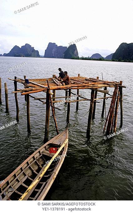 Men constructing a pile dwelling, Phang Nga Bay, Thailand