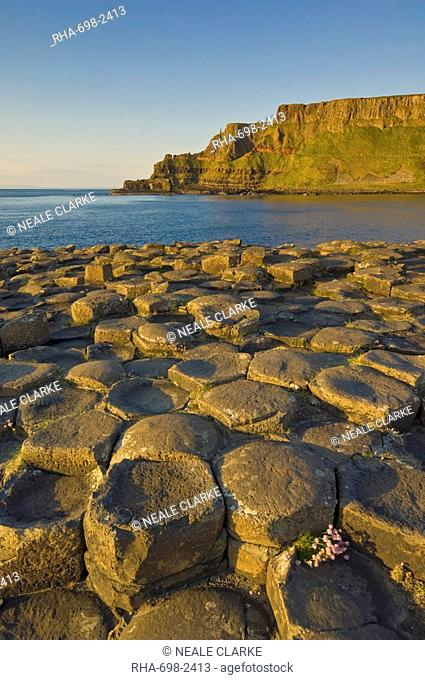 Hexagonal basalt columns of the Giant's Causeway, UNESCO World Heritage Site and Area of Special Scientific Interest, near Bushmills, County Antrim, Ulster