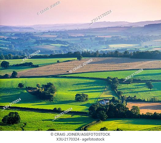 Evening light over the Brendon Hills viewed from Thorncombe Hill in the Quantock Hills near Bicknoller and Crowcombe, Somerset, England, United Kingdom