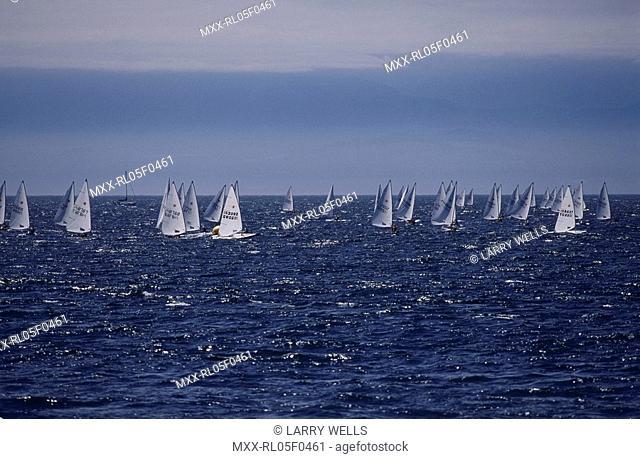 Sailboat Race, National Open Laser Championship, Victoria, BC
