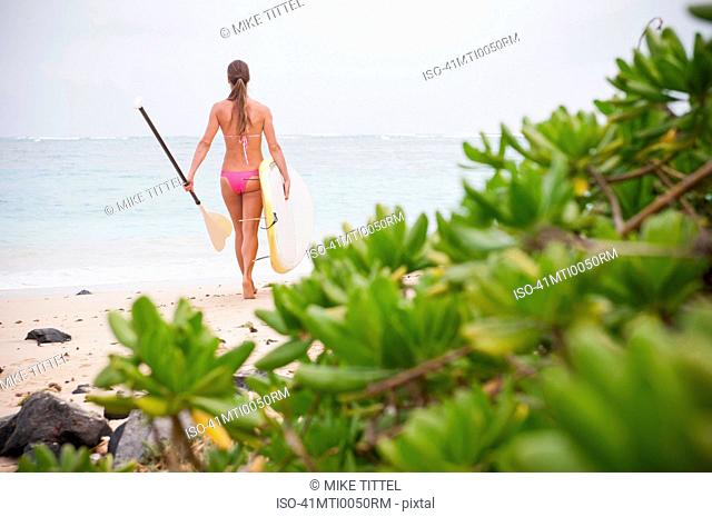 Surfer carrying surfboard on beach