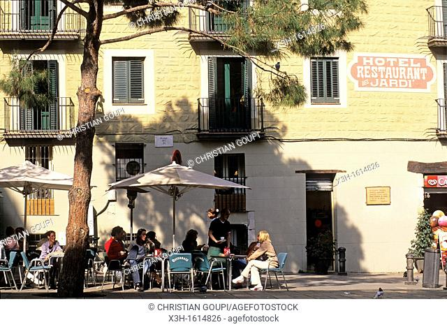 Placa del Pi, Barcelona, Catalonia, Spain, Europe