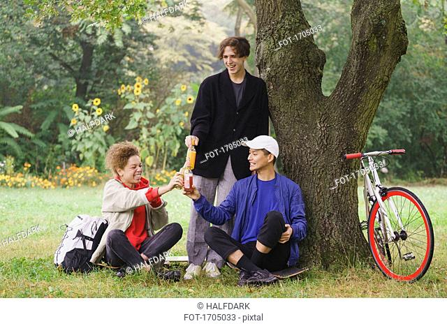 Happy friends toasting drinks while relaxing below tree on grassy field at park