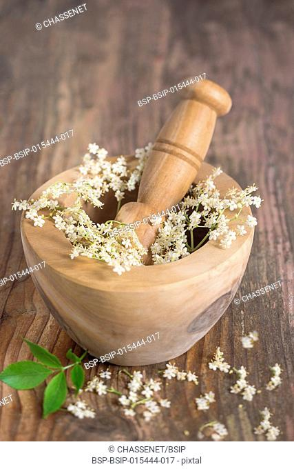 White elder flowers on a wooden mortar