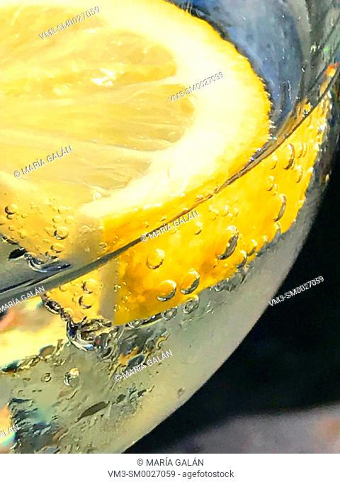 Slice of lemon in sparkling water. Close view