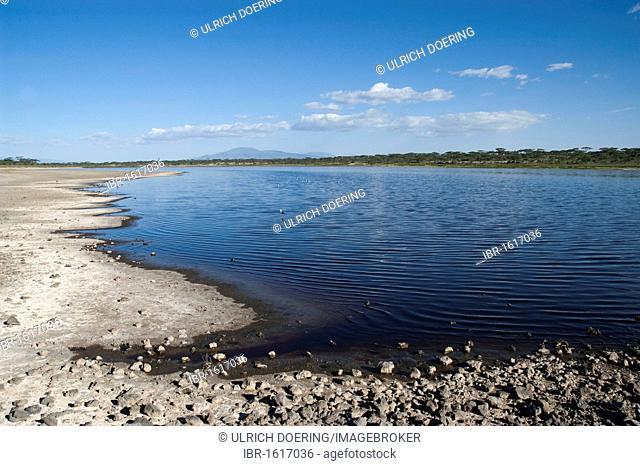 Lake Masek at the outset of Oldupai Gorge in Ndutu, Ngorongoro, Tanzania, Africa