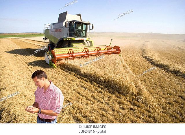 Farmer in barley field