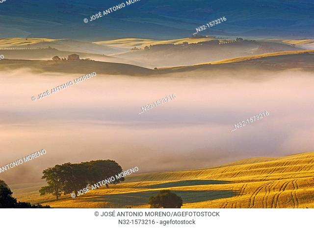 Val d'Orcia at dawn, morning fog, Tuscany landscape, UNESCO world heritage site, San Quirico d'Orcia, Siena province, Tuscany, Italy