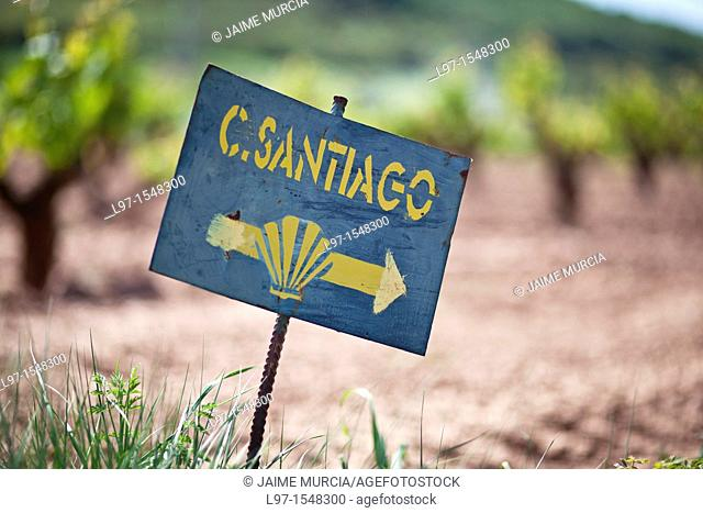 Sign in field pointing the way on the Camino de Santiago, route Frances