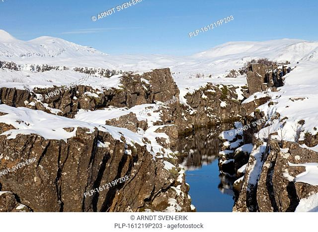 Nikulasargja canyon in the snow in winter, Thingvellir National Park, Iceland