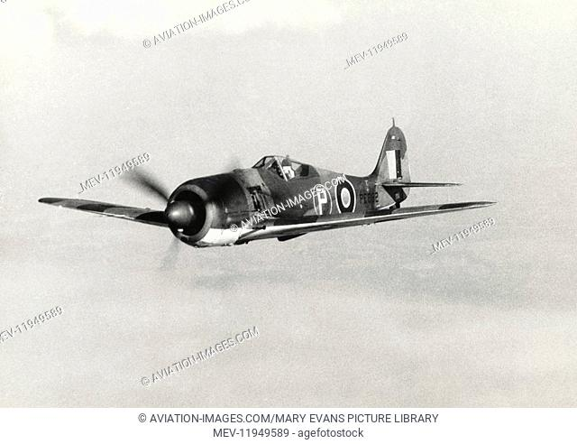 A Captured Luftwaffe FW-190 with Special-Livery UK RAF Marking