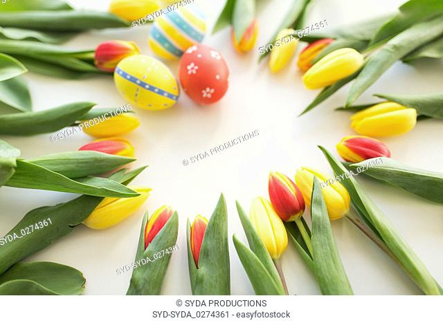 close up of colored easter eggs and tulip flowers