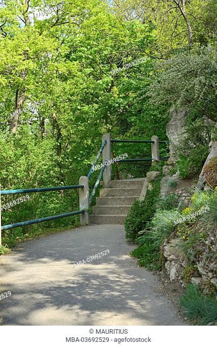 Scenery, footpath on the Grazer Schlossberg (castle hill)