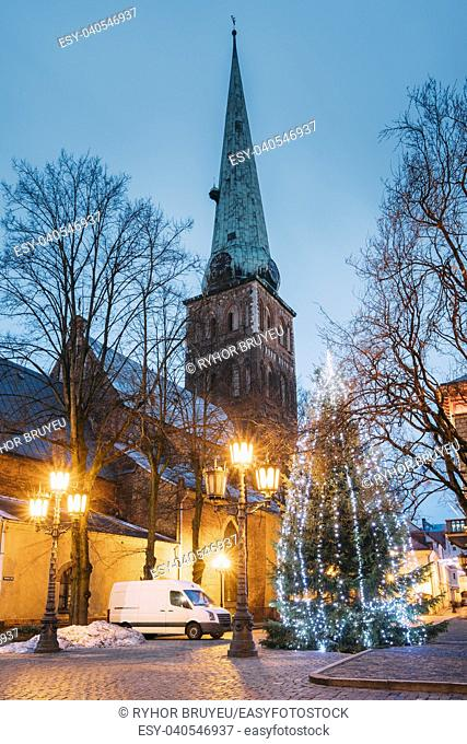 Riga, Latvia. Cathedral Basilica Of St. James And Holiday Xmas Christmas Tree At Evening In Night Illuminations Lights. Church Is Wrongly Called St