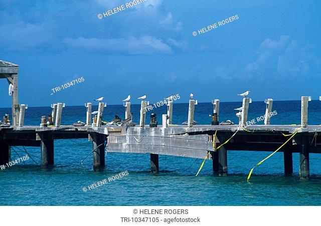 Nevis St Kitts Pinney's Beach Hurricane Damage
