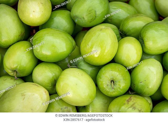 Vegetable market Abu Dhabi - Vegetable market Abu Dhabi - United Arab Emirates
