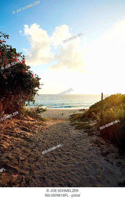 Path to beach, Saint Martin, Caribbean