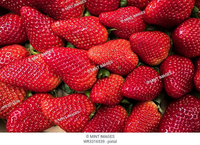 Fresh fruits, red ripe strawberries