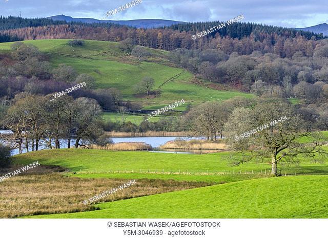 Esthwaite Water, Lake District National Park, Cumbria, England, United KIngdom, Europe