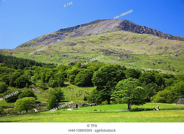 Wales, Gwynedd, Snowdonia National Park, Field and Mountain View at Beddgelert