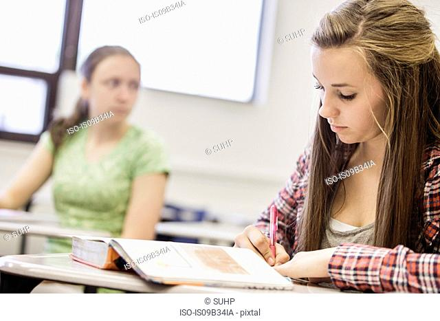 Teenage girl writing note in high school lesson