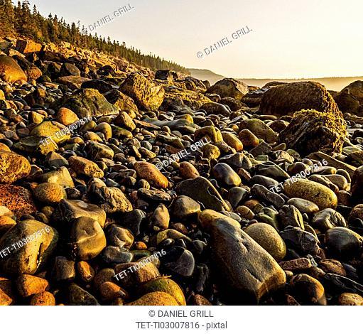 Rocks on beach at sunrise
