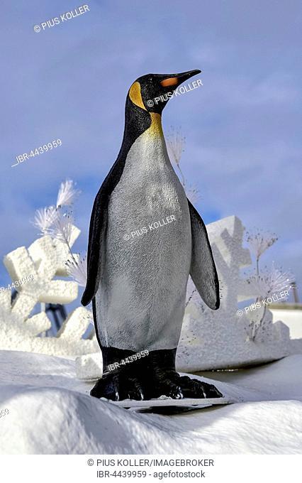 Penguin in winter landscape, Europa-Park Rust, Baden-Württemberg, Germany